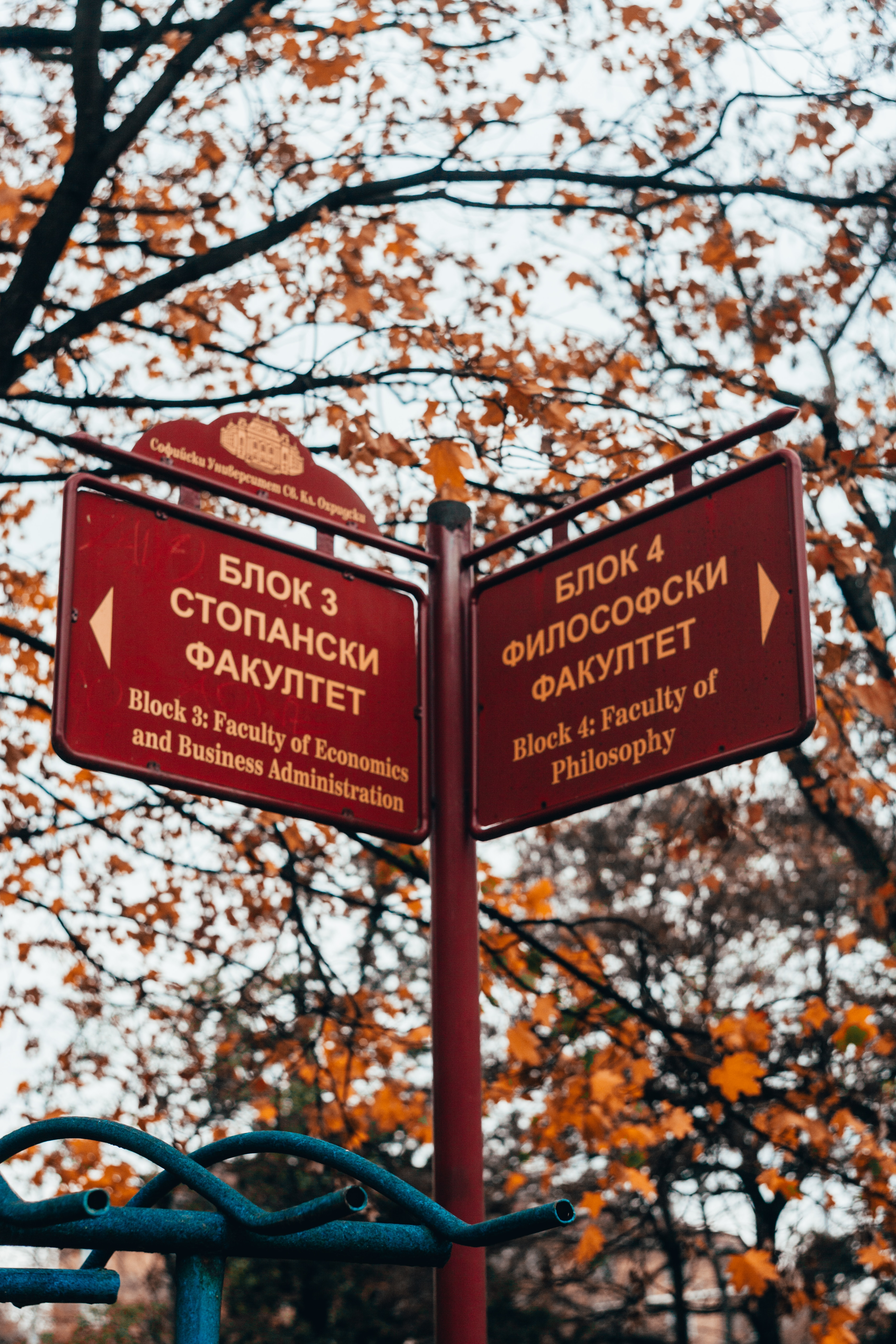 georgi-kyurpanov-sdudysyZ20w-unsplash